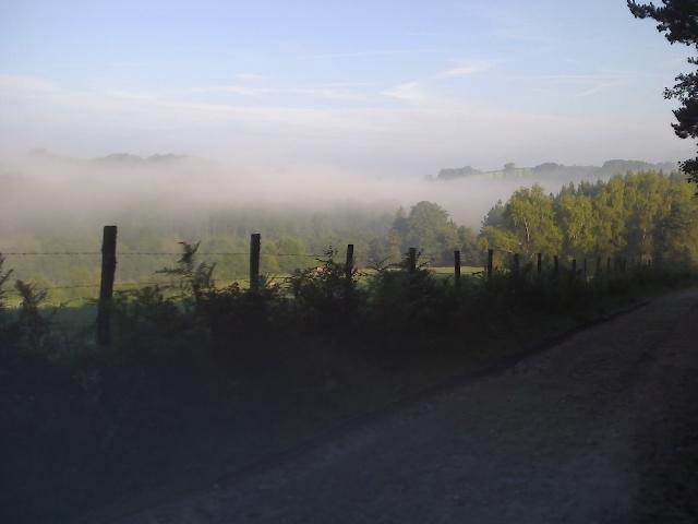 brume d'été